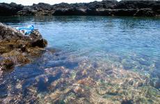 トウシキ海岸 大島