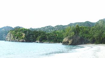 扇浦海岸 父島