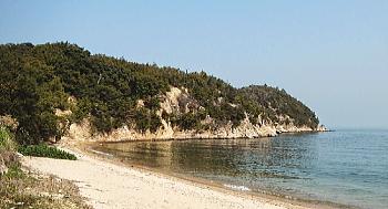 王子ヶ浜海水浴場
