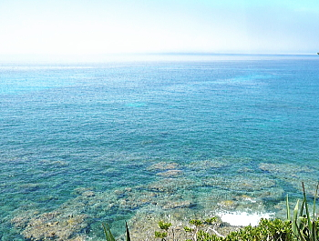 御幸之浜 母島